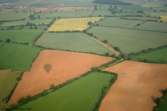 Field Shapes and Shadow