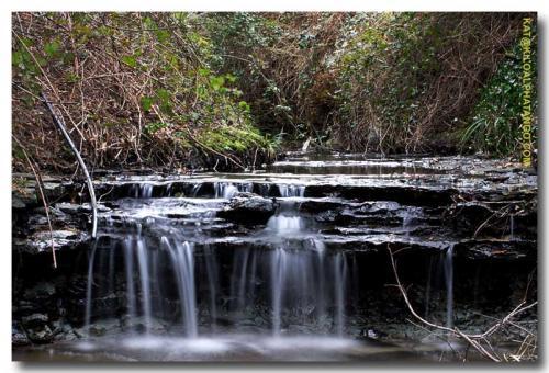 Mini Waterfall: A small waterfall in Bradley Brook, Bristol.