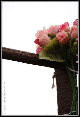 Flower Memorial: Some artificial flowers tied to a fence; protecting the public from a steep gully.